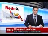 RedeX3 Прими участие в нашей команде!Доход от 110 до 720 000$
