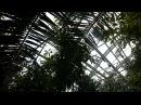 Полярно-альпийский ботанический сад им. Аврорина Экскурсия в оранжерею