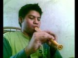Dragonforce - through the fire and flames on flute