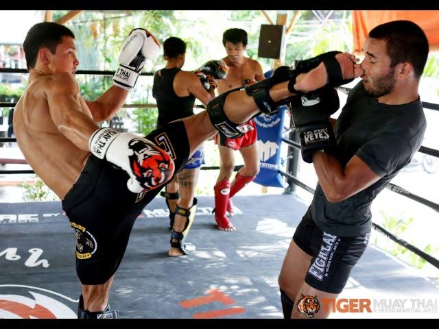 Team MMA/Muay Thai Tryouts(Full Documentary)