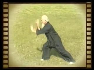 Daoist- Bagua Master Lu Zijian (117)  -  Taiyi Huolong Palm