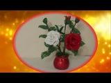 Белая и красная роза, часть 2
