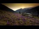 Cztery pory roku w Tatrach Timelapse