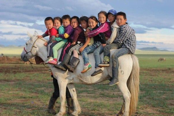 Монгольский школьный автобус