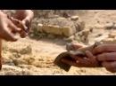 Пояс царицы Амазонок - В поисках истины