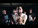 Assuming We Survive Better Without You OFFICIAL VIDEO