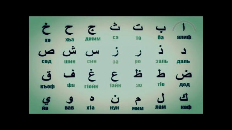 Коран из трав нашли в дубаи