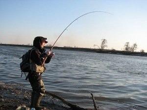 внимательность на рыбалке