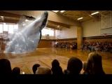 3D Голограмма Кита в Спортивном зале