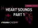 Systolic murmurs, diastolic murmurs, and extra heart sounds