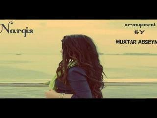Nargis - Fragile Sting