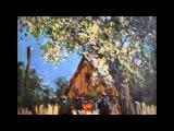 Георгий АБРАМОВ -  Одинокая гармонь