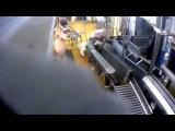 В скотобойне устроили лабораторию пыток для животных (видео 18+)