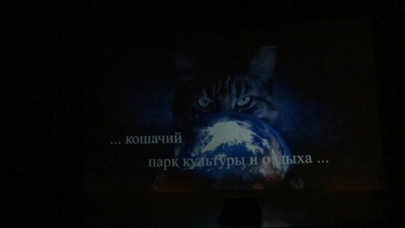 Открытие конкурса-фестиваля Преображение. Презентация проекта Котоград