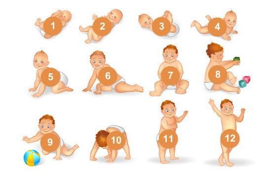 Календарь развития ребенка до 1 года по месяцам