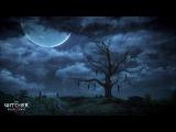 Witcher 3 - В поле спят мотыльки