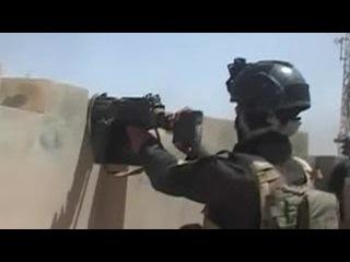 Иракские военные освободили от ИГИЛ Эль-Фаллуджу