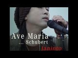 Ave Maria (Schubert) by Janinto