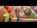 Ленивцы! Очень смешной момент из Зверополиса