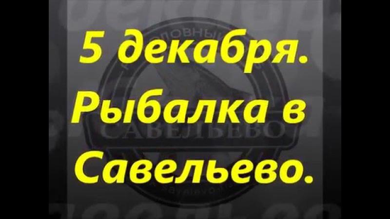 5 декабря рыбалка в Савельево-1 на вип зоне.
