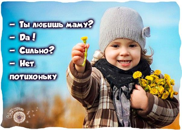 https://pp.vk.me/c633926/v633926075/2368a/pb_SLMwa0XM.jpg