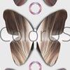 ColorUS: Окрашивание волос, бронд, омбре, балаяж