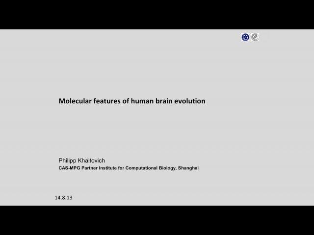 Molecular features of human brain evolution — Филипп Хайтович