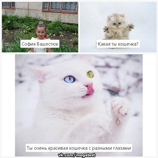 Фото №408586440 со страницы Софии Вашестюк