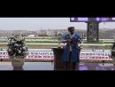 Чеченские Песни Ризавди Исмаилов Сан ирс безам Нохчийчоь