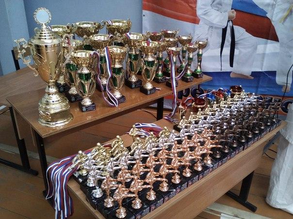 """5 июня 2016 года. Кубок Клуба """"УДАР"""". КУБКИ"""