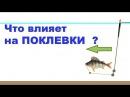 размышление о ПОКЛЕВКАХ. Что влияет на поклевки Поплавочная удочка. Рыбалка. Ло...