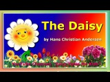The Daisy by Hans Christian Andersens. Fairy Tales for Kids