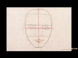 Как нарисовать лицо человека поэтапно
