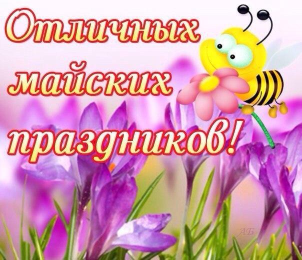 https://pp.vk.me/c633929/v633929686/236f8/GxnGbYAPTF0.jpg