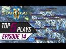 StarCraft 2: TOP 5 Plays - Episode 14