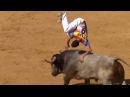 VERSUS. БЫК ПРОТИВ ЛЬВА И НОСОРОГА. Эпичные бои быков!