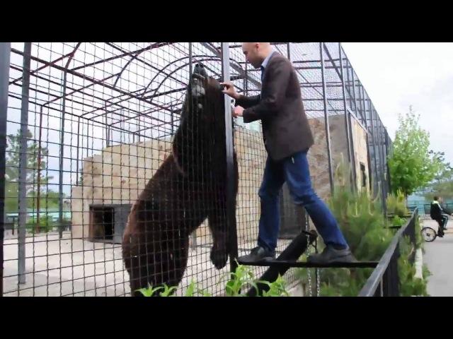 🐻 Крым, Тайган - Медведи 🐻