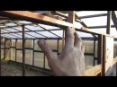 Сотовый поликарбонат на деревянную теплицу 3