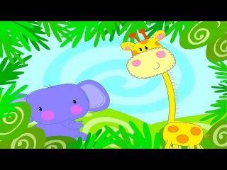 Обучающее видео для детей. Учим животных (в Африке, На севере, В Австралии). Часть 2