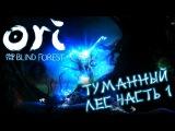 Ori and the Blind Forest - Туманный Лес, часть 1 ПРОХОЖДЕНИЕ 7- Туманный Лес 1 ПРОХОЖДЕНИЕ 7