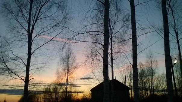фото из альбома Насти Комизяковой №4