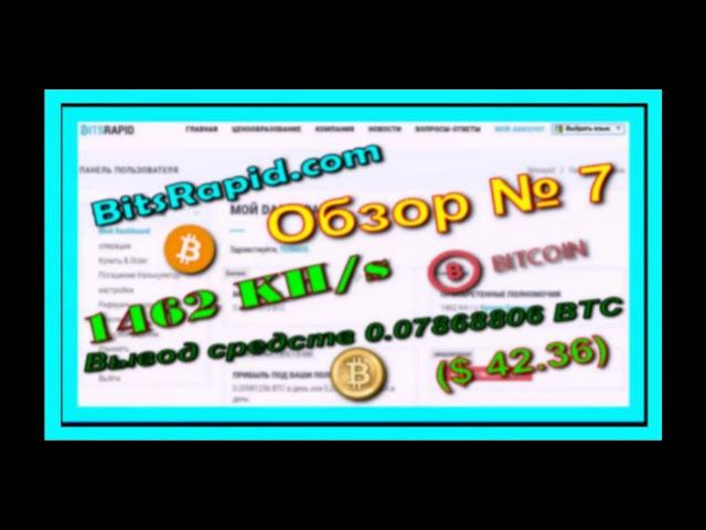 BitsRapid com Обзор № 7 Вывод средств 0 07868806 BTC $ 42 36 Прибыль в день $ 5 28