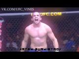 UFC KO |not vine|