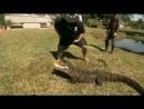 Укротители аллигаторов. Крокодзилла