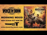 voice of ruin-morning wood-2014-full album stream