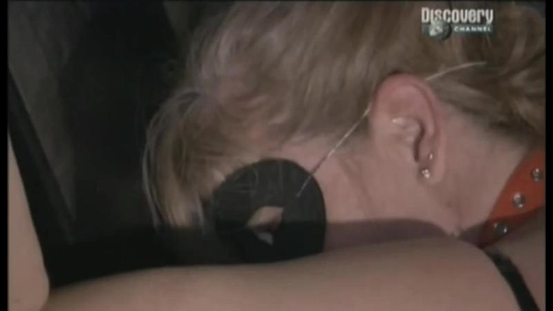 Фильмы дискавери о сексе смотреть