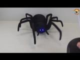 Робот-паук Black Widow (Черная вдова)