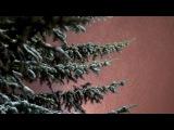 Зимний вечер в Калуге.Эдуард Сычев-автор.