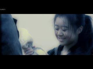 Охотники за сокровищами / Ci Ling / The Treasure Hunter (2009)