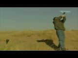 Искусство выживания Рэя Мирса - Сахара.